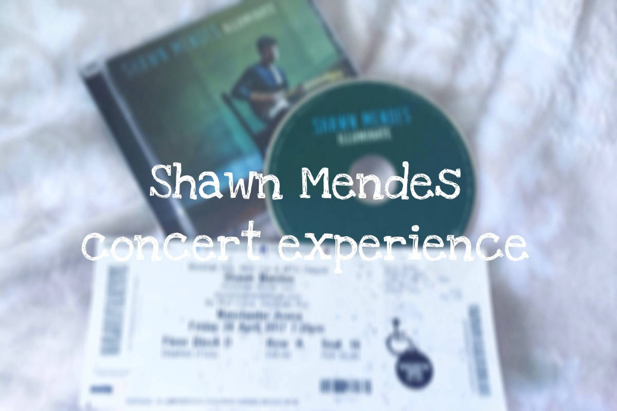 Shawn Mendes concert experience